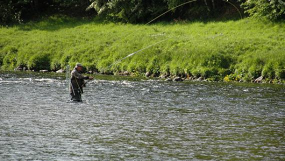 Ballogie Estates Fishing