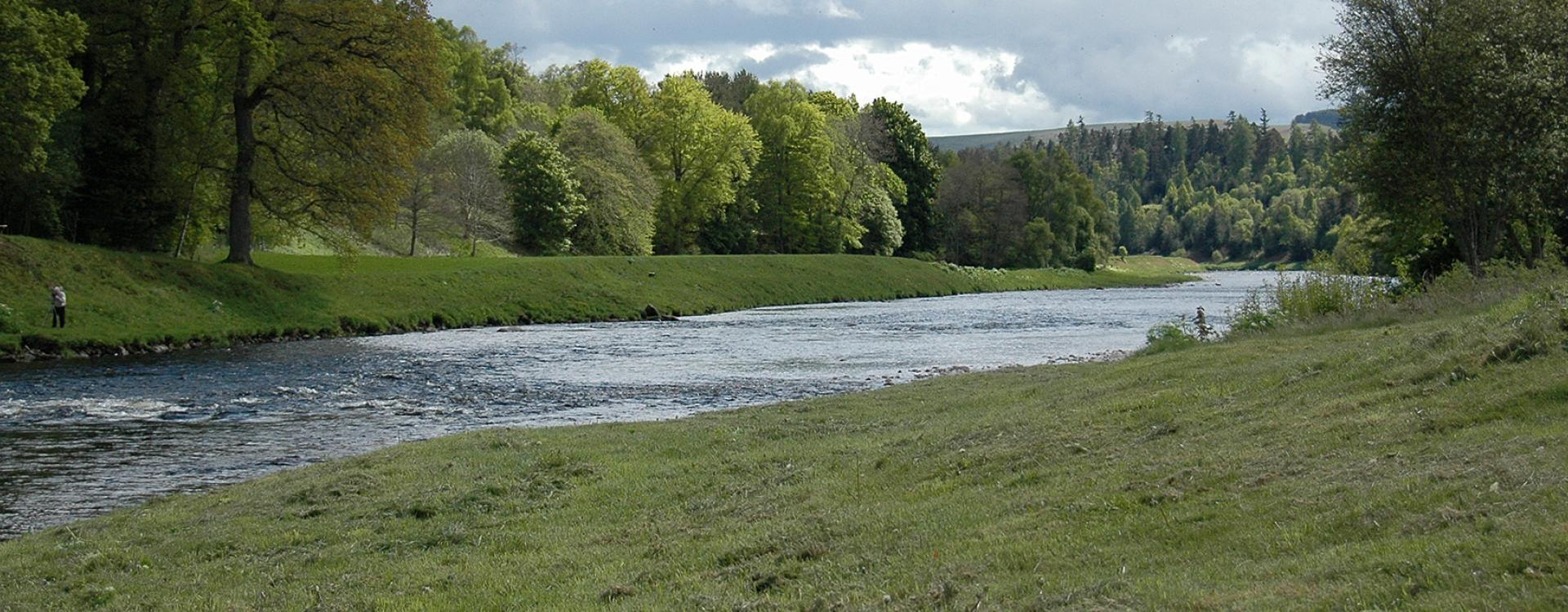 Salmon Fishing on the River Dee